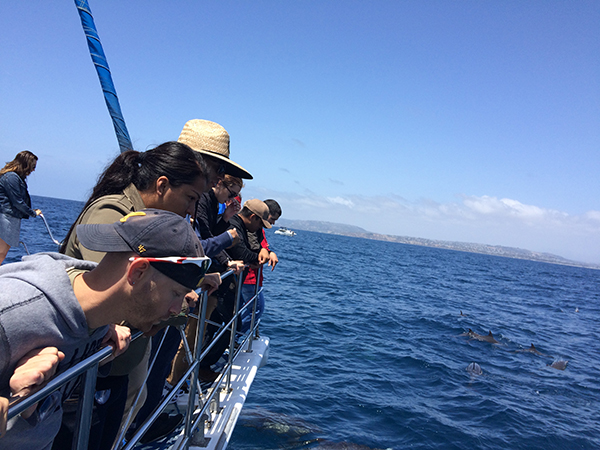 Student Veterans watching dolphins